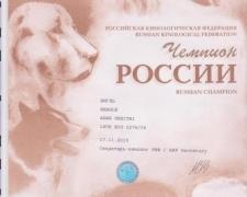 rusijosch