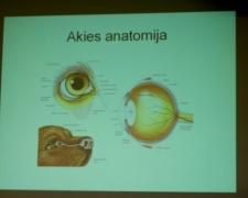 """Seminaro """"Šunų akių ligos: žvilgsnis iš arčiau"""" akimirkos"""